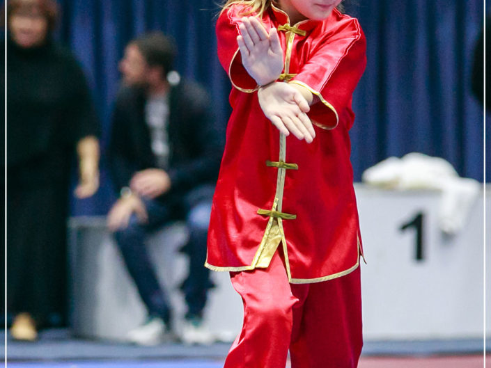 Campionatul National de Taolu