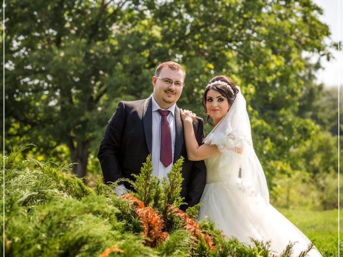 nunta parcul tineretului